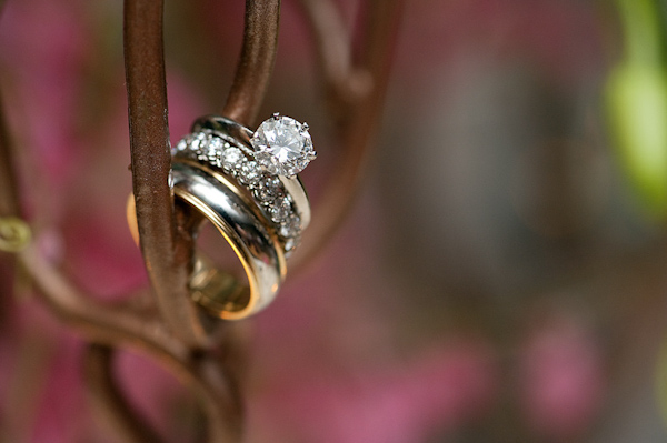 wedding rings resting on branch - photo by Houston based wedding photographer Adam Nyholt