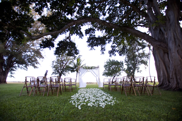 Chuppah under an enormous tree - wedding photo by Melissa Jill Photography