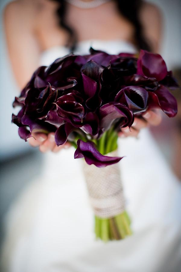 Dark purple wedding bouquet - wedding bouquet photo by Michael ...