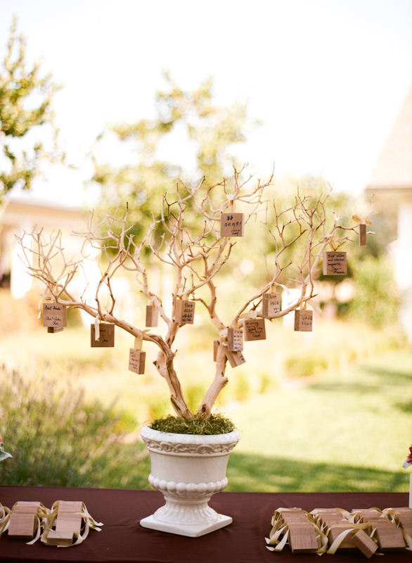 Rustic tree with well wishes to the couple from guests hanging on the branches - Photo by Sylvie Gil Photography