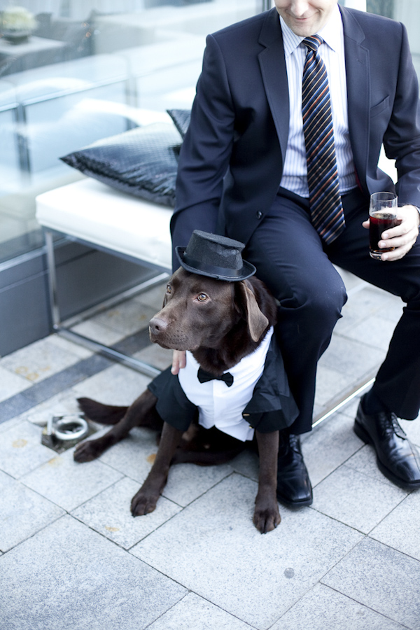Groom sitting with his dog. The dog is dresses in a tux and hat- wedding photo by top Canadian wedding photographer Rebecca Wood