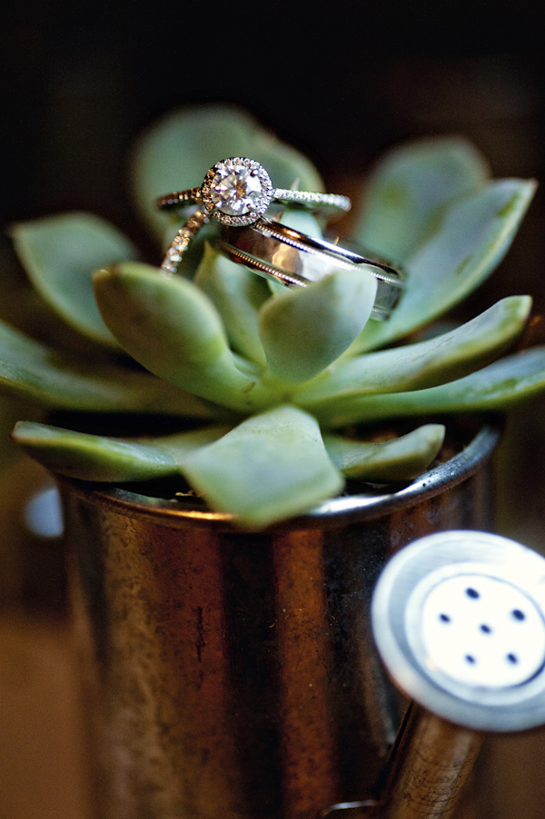 ring detail inside a watering can with plant - wedding photo by top Atlanta based wedding photographers Scobey Photography