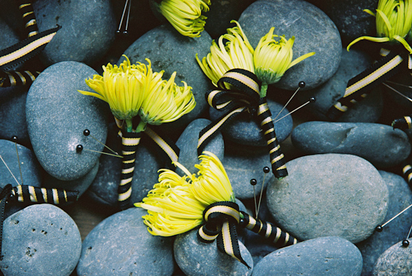 black and yellow wedding boutonnieres photo by Yvette Roman Photography