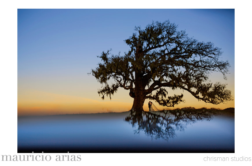 Best Wedding Photo of 2013 - Mauricio Arias of Chrisman Studios - California wedding photographer