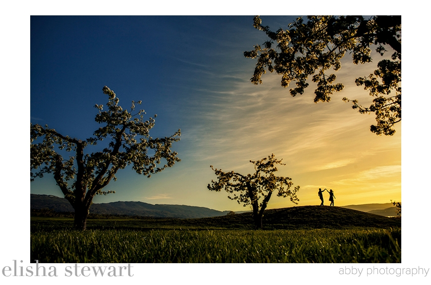 Best Engagement Photo of 2014 - Elisha Stewart of Abby Photography - British Columbia, Canada wedding photographer