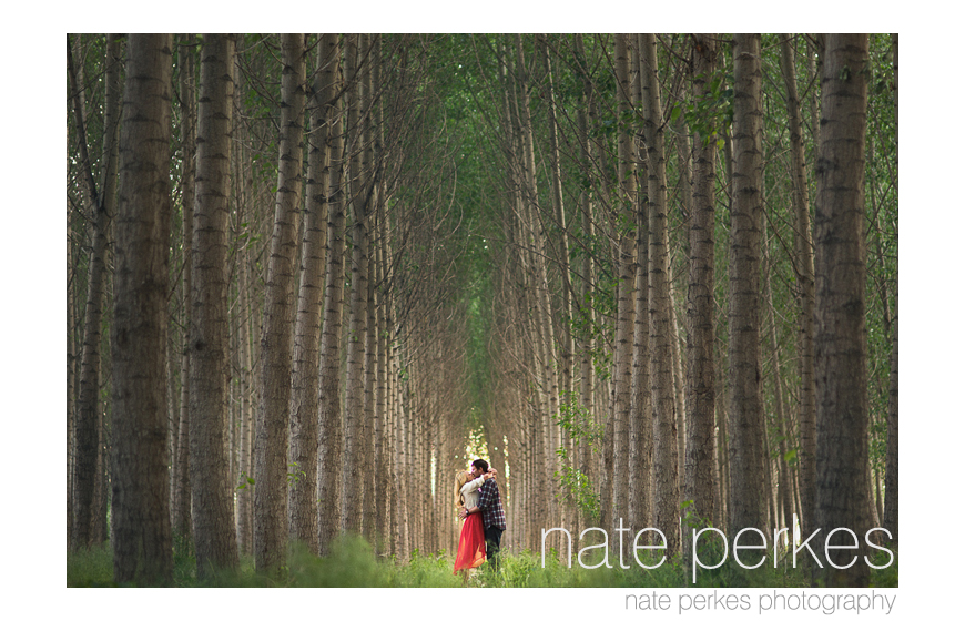 Best engagement photo 2013 - Nate Perkes of Nate Perkes Photography - Idaho