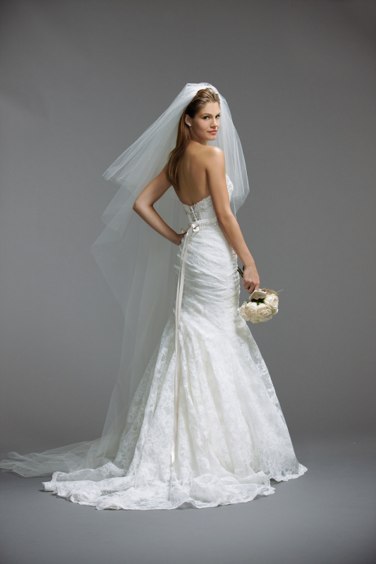 Watters - Spring 2014 Bridal Collection - Chara (corset) Wedding Dress
