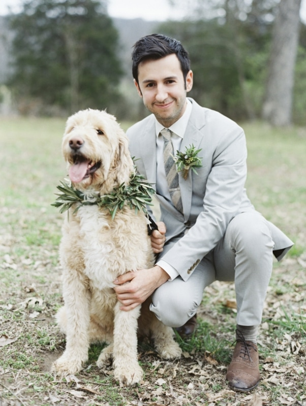 groom in gray suit with dog wearing garland, photo by Erich McVey Photography