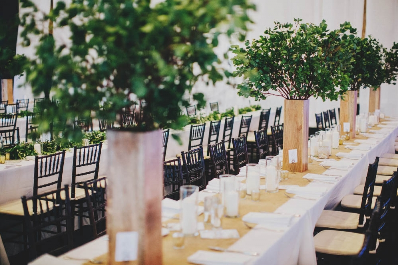tall plant centerpieces small tree centerpieces farm table reception
