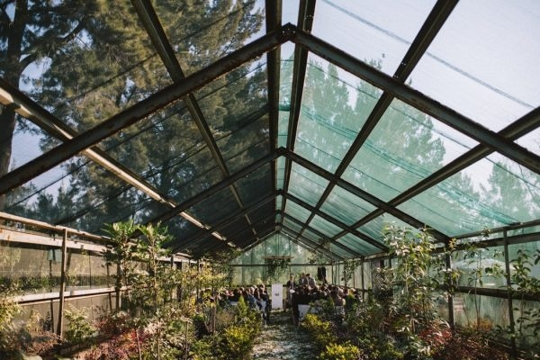 Greenhouse Wedding at Rosemary Hill in South Africa