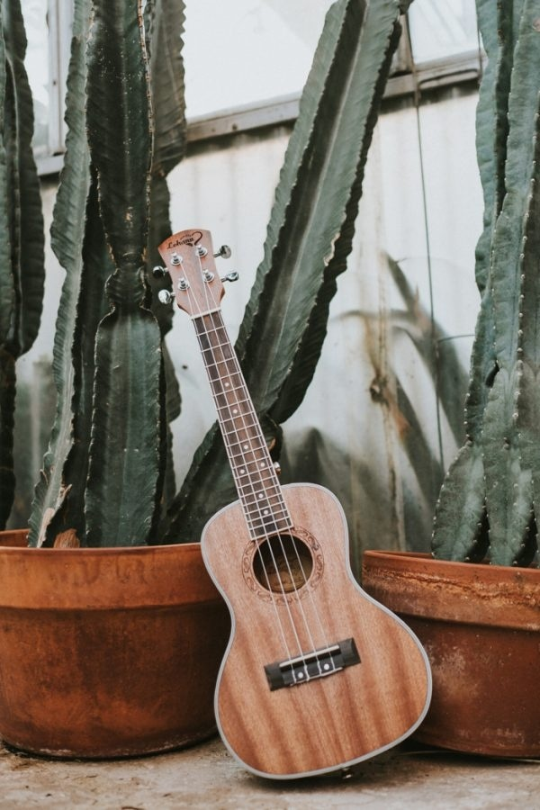 Cacti and Ukulele Details in A Greenhouse Engagement Session