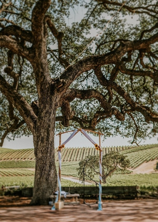 California Countryside Wedding at Palomar Junction Vineyard and Winery Ceremony Arch