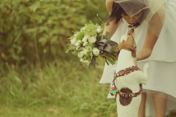 sweet photo of bride kissing dog - adorable wedding photo by award-winning wedding photographers stillmotion | JunebugWeddings.com