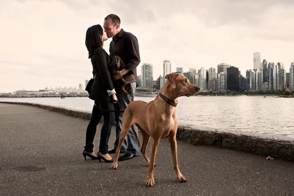 engagement photo with animal by Derek Wong of Derek Wong Photography | junebugweddings.com