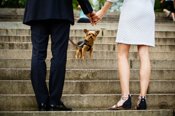 engagement photo with animal by Brian Dorsey Studios | junebugweddings.com