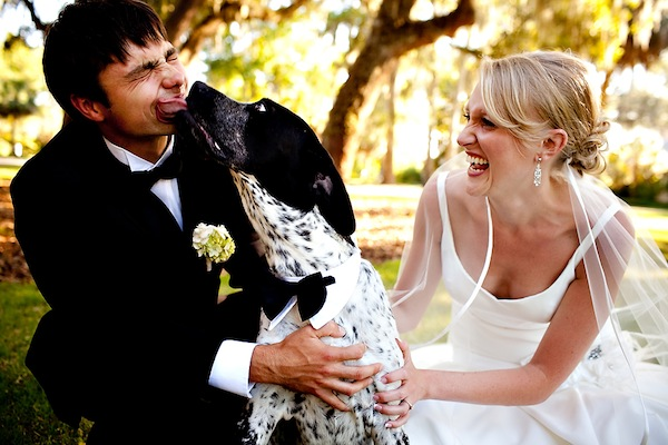 fun wedding day photo of the happy couple laughing with their dog - photo by top North Carolina wedding photographer Tracy Turpen
