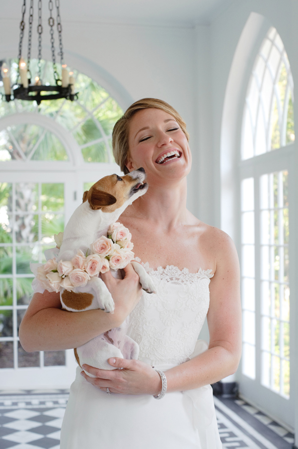 adorable photo of bride holding dog licking her face - sweet wedding day photo by top South Carolina photographer Leigh Webber