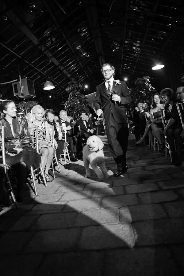 groom walking dog down the aisle for wedding ceremony - photo by top Michigan wedding photographer Abby Rose