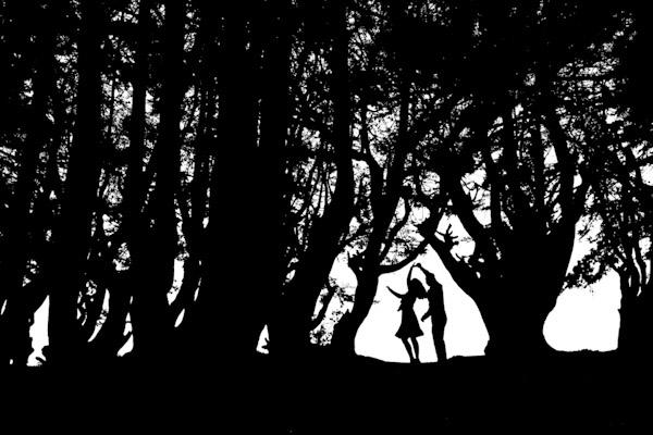 amazing silhouette wedding photo by Ben Chrisman Photography