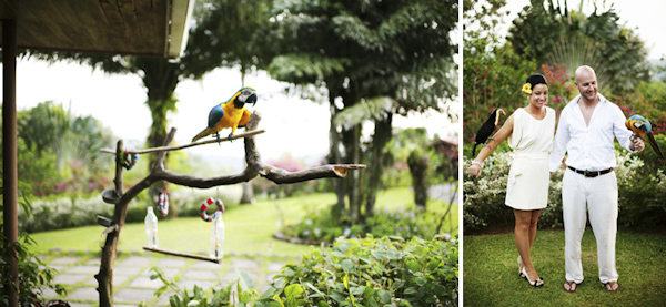 Costa Rica resort wedding - pair of photos of the happy couple with tropical birds - photo by Denver based destination wedding photographer Otto Schulze
