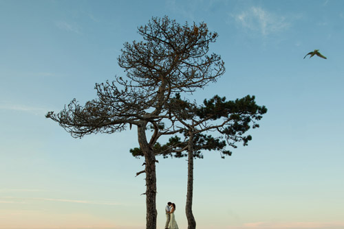 beautiful wedding portrait - honorable mention from the Junebug Best of the Best 2011, photo by Jonas Peterson of Jonas Peterson Photography