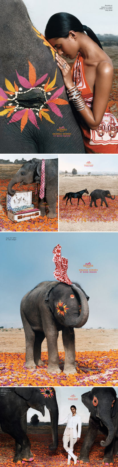 Hermes Orange, India Pink ad campaign