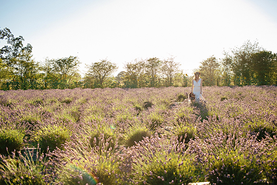 lavender farm wedding inspiration photo shoot with photos by Jennifer Ballard Photography | via junebugweddings.com