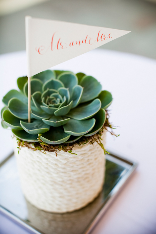 succulent floral detail from a nautical inspired wedding on San Juan Island with photos by Laurel McConnell Photography | junebugweddings.com