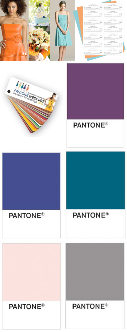 Pantone Color Swatch Pantone Color Swatches