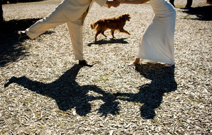 Sweet wedding couple shadow portrait with their dog by Barbie Hull Photography