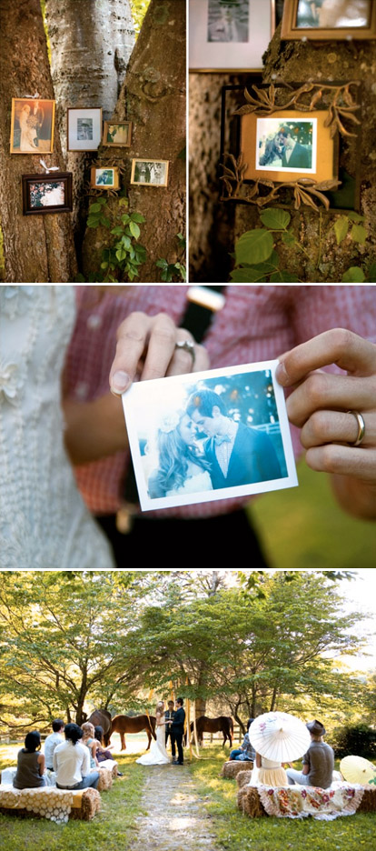 alternative wedding family tree decor idea for an outdoor wedding from Joy Thigpen, image by Tec Petaja