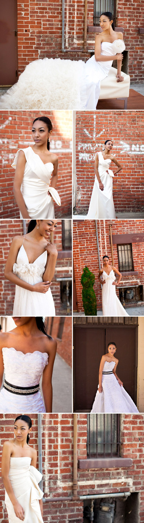 fall 2010 wedding dress collection from Alina Pizzano