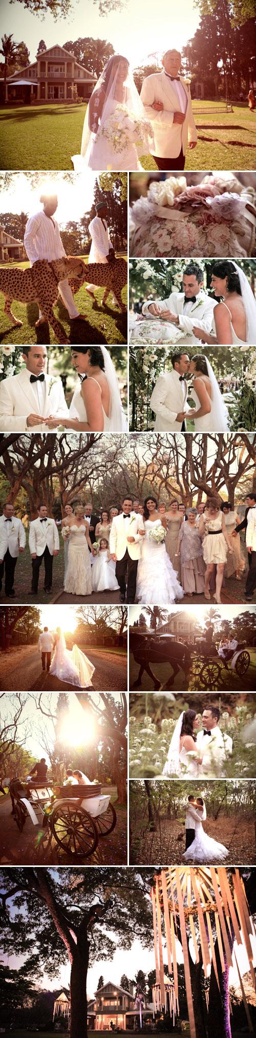 Swan Lake Inspired Wedding In Harare Zimbabwe Junebug Weddings,Grandmother Bride Dress Wedding Pant Suits For Grandmothers