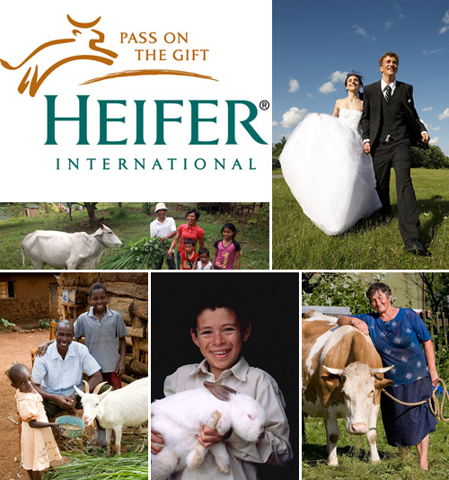 Charitable wedding registries and gifts from Heifer.org