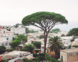 wedding in Anacapri, Italy with photos by Rochelle Cheever
