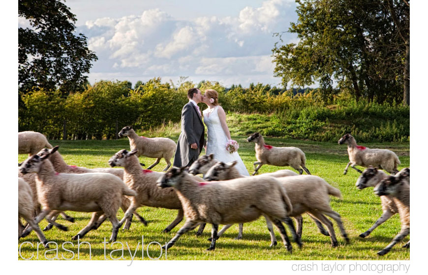 The best wedding photos of 2009, image by Crash Taylor Photography