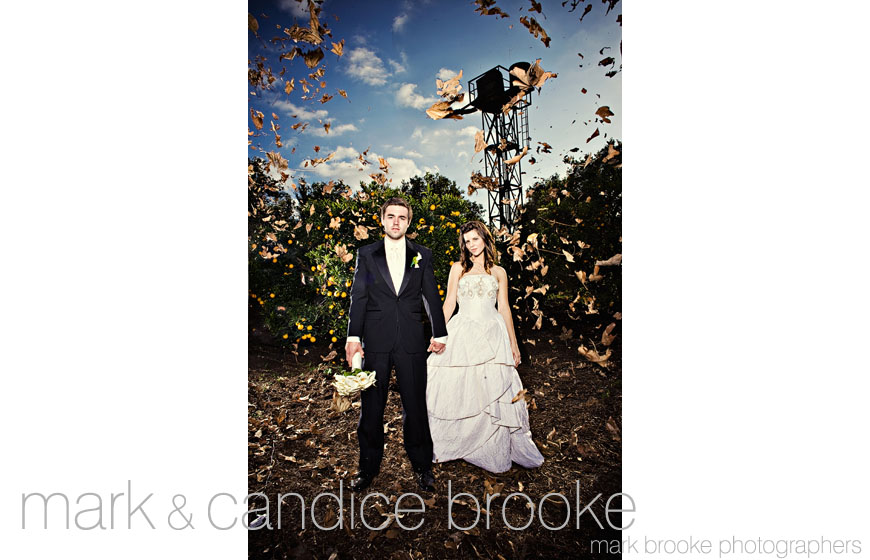 The best wedding photos of 2009, image by Mark Brooke Photographers