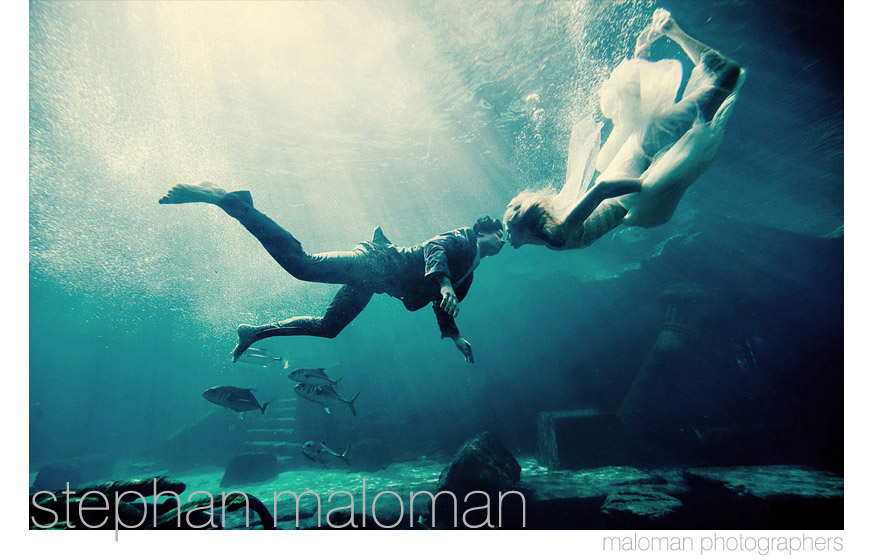 Best photo of 2010 - Maloman Photographers - Chicago and destination wedding photographer