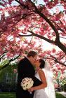 washington dc wedding photographers, photo by: paul morse photographs