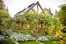 Bella Luna Farms - Grapevine covered dining room - World's Best Wedding Venues - Seattle, WA
