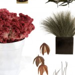 Dried Flowers, Seed Pods and Branches for your Wedding from Nettleton Hollow