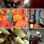 Hollyflora- Creative Wedding Floral Design