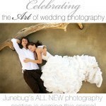 Junebug's ALL NEW Photography Section! Coming This Spring!