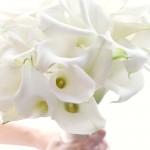 White Wedding Flowers from Flora Nova Design