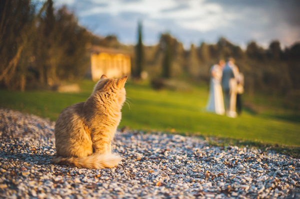 picturesque elopement in Tuscany with photography by Roberto Panciatici | via junebugweddings.com (15)