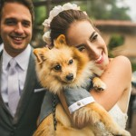 Junebug's Top 10 Cutest, Funniest and Most Lovable Dogs at the Wedding!