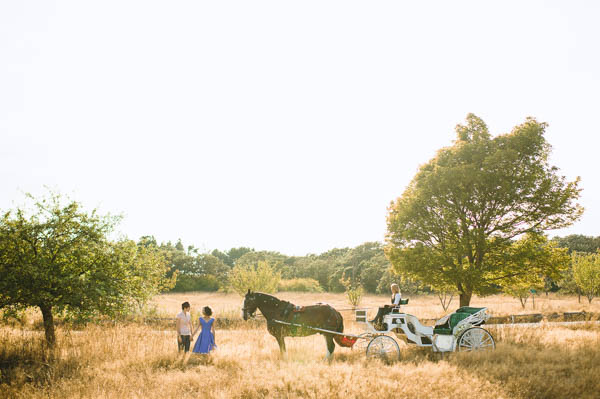 quirky picnic wedding horse and carriage