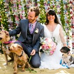 Wedding Inspiration – Adorable Wedding Dogs