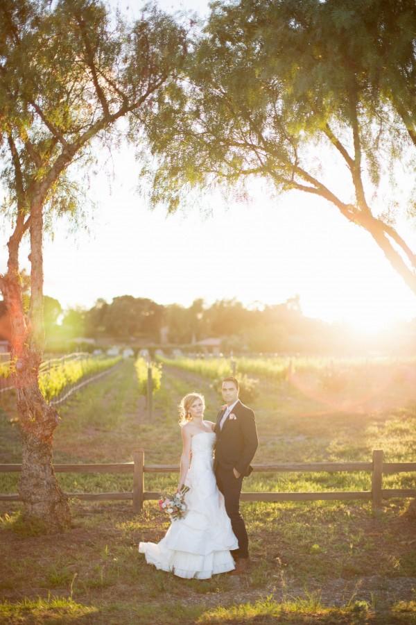 romantic vineyard wedding