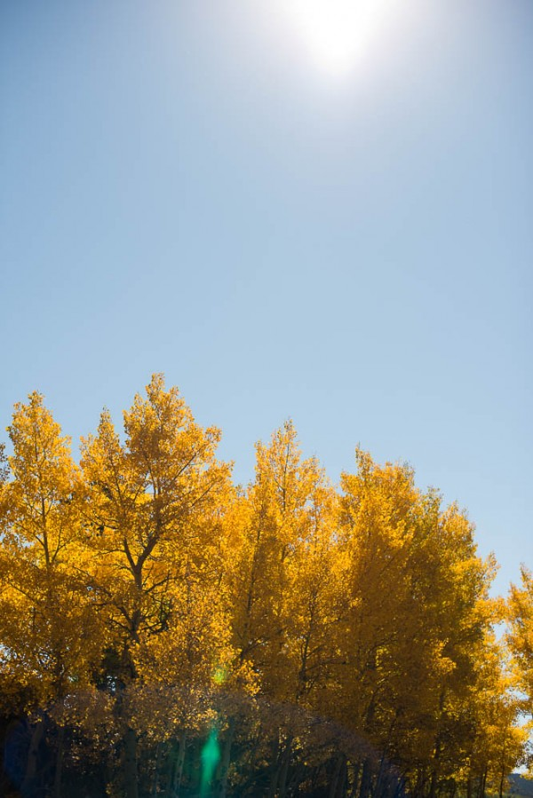 Yellow-Aqua-Aspen-Wedding-3